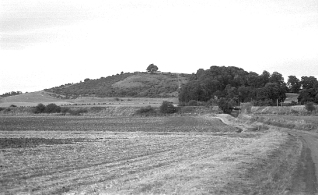 starr_hill_1_small