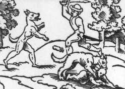 The loup garou of old Vincennes.
