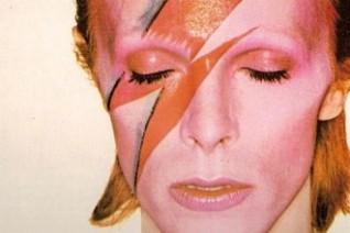 David-Bowie-Ziggy-Stardust-Ginger-Parrot-330x220