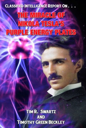 TESLA PURPLE PLATE COVER